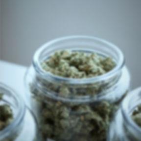 Cannabis_Jar_edited.jpg