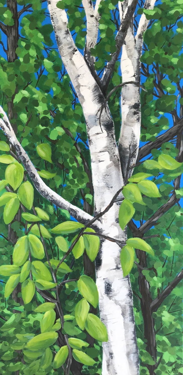 Summer Birch