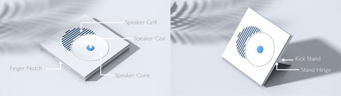 Directional Speaker Puzzle