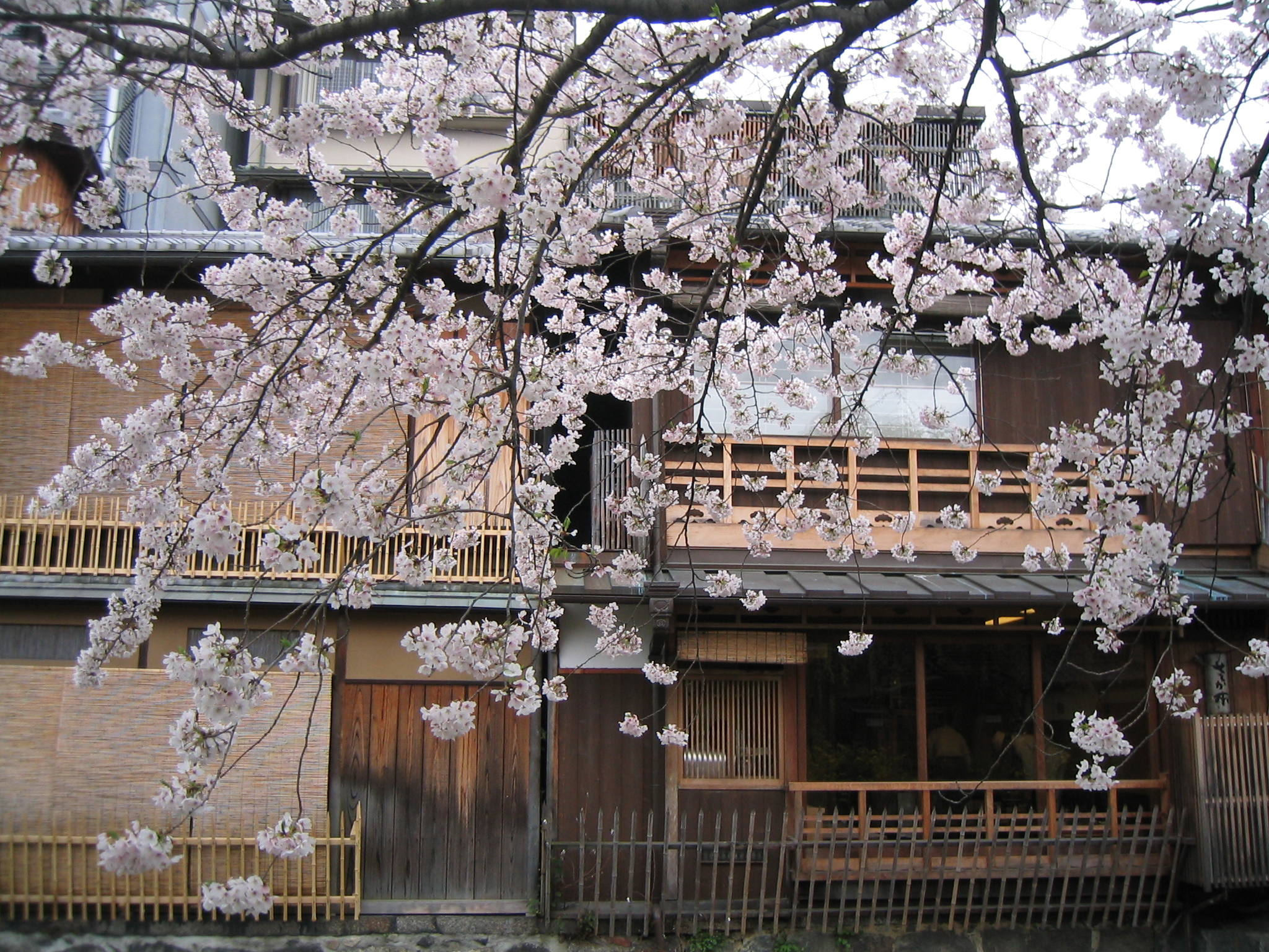 Shirakawa Gion