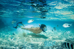 Club Med Kabira Beach snorkelling