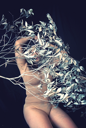 Ayline Olukman - Women tree