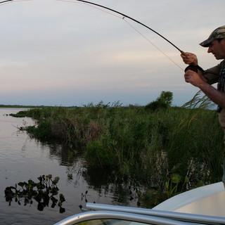 pesca con mosca delta esquina1.jpg