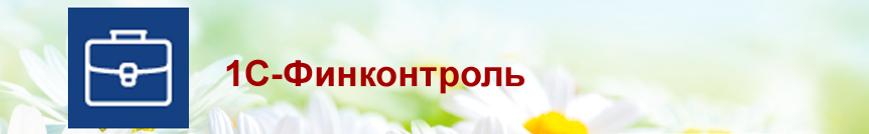 Сервисы-ИТС-1С-Финконтроль.png