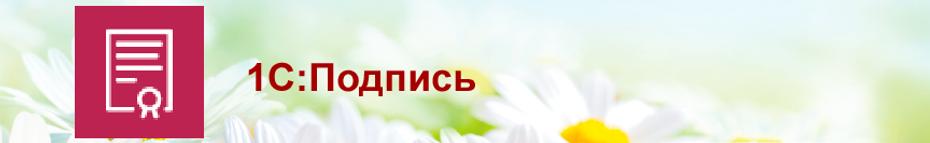 Сервисы-ИТС-1С-Подпись2.png