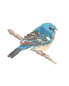 blue bird on branch 2.png