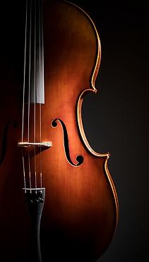 Cellolektioner i Stockholm