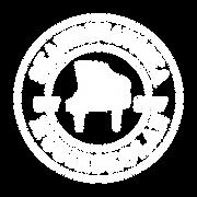 Logga Skandinaviska Musikskolan