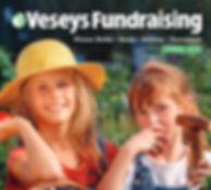 Screenshot_2020-03-13 2020_Veseys_Fundra