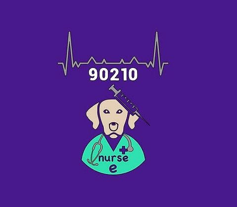 nurse e