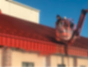 Commercial Roof Coatings.PNG