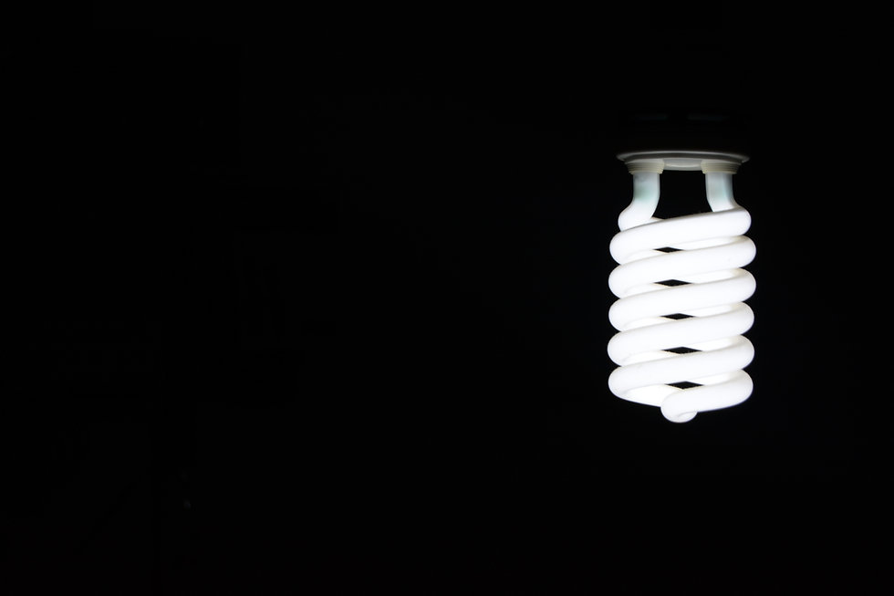 Light Bulb - Green Brook Electronics