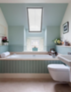Bathroom Skylight Blue.png
