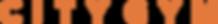city_gym-logo.png