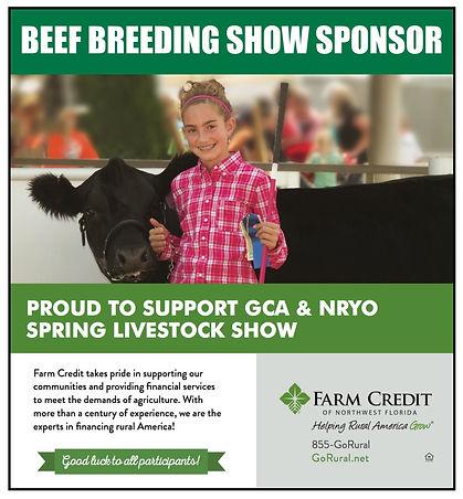 Beef Breeding.jpeg
