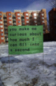 fiona-barry-in-praise-of-green-bag-sign-