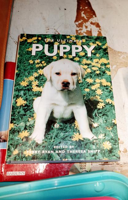 puppy-book.jpg