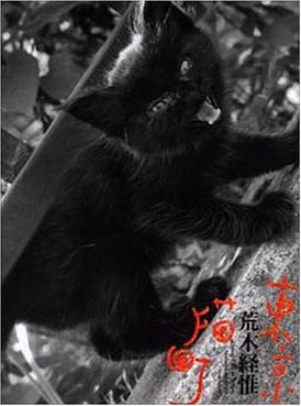 living cats in tokyo.jpg