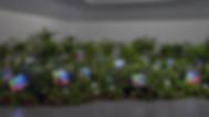 Nam June Paik TV Garden.jpg