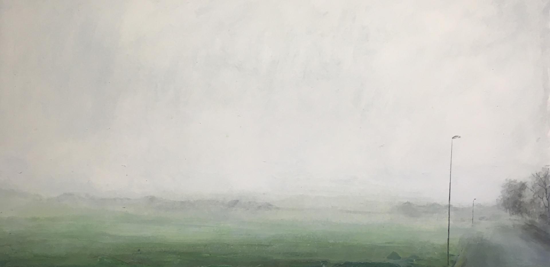 Untitled (misty morning)
