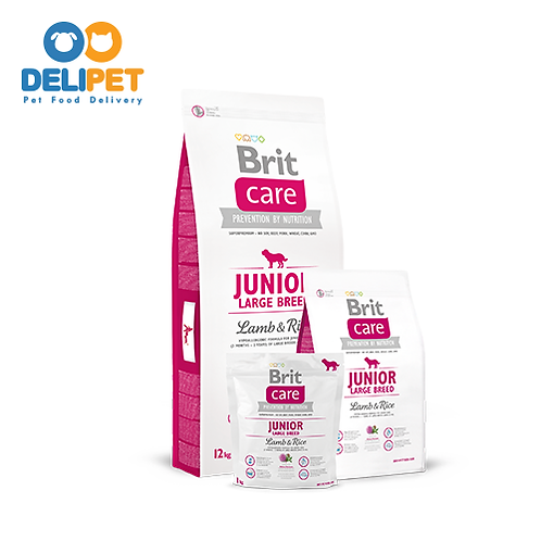 Brit Care Junior Large Breed Lamb & Rice (3KG) - (12KG)