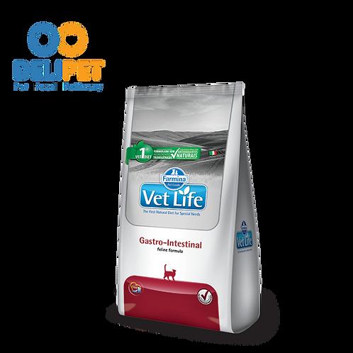 Vet Feline Gastrointestinal - 2KG