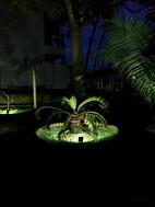 jardim 2.jpg