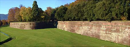 Mura4
