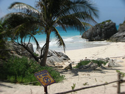 beach-at-the-tulum-ruins