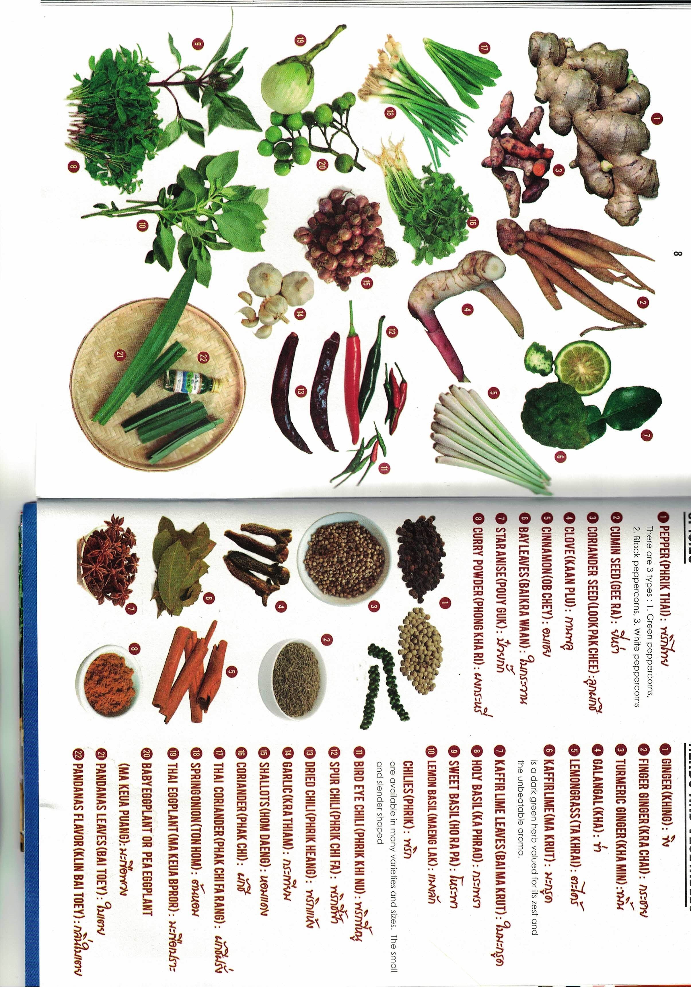 ingredienti thai