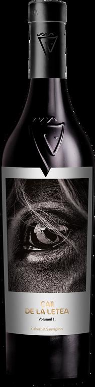 cabernet Sauvignon copy.png