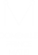 DPM logo.png