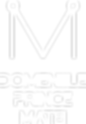 logo DOMENIILE PRINCE MATEI.png