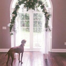 Flowers for Wedding Arch