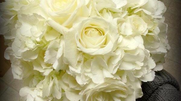 35 Stems White Hydrangea