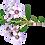 Thumbnail: DIY Filler Flower Package