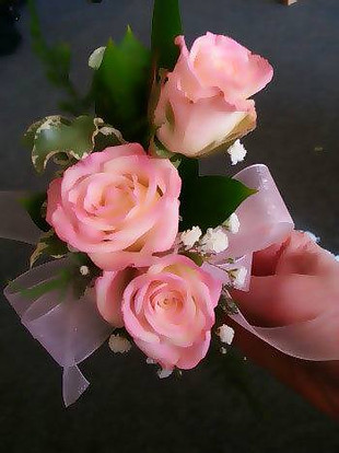 pink roses corsage.jpg