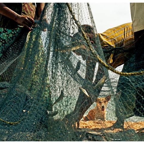 Fisherfolks.  Nilaveli. # 4