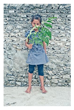 Plant_Life_15.JPG