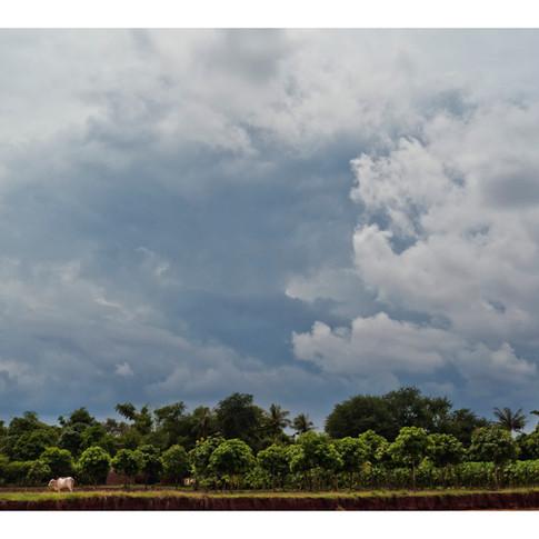 Gathering thunderclouds, outskirts of Phnom Penh, Cambodia