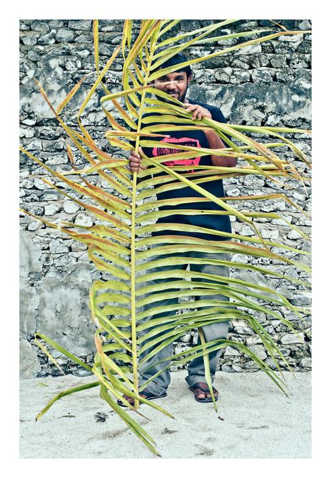 Plant_Life_6.JPG