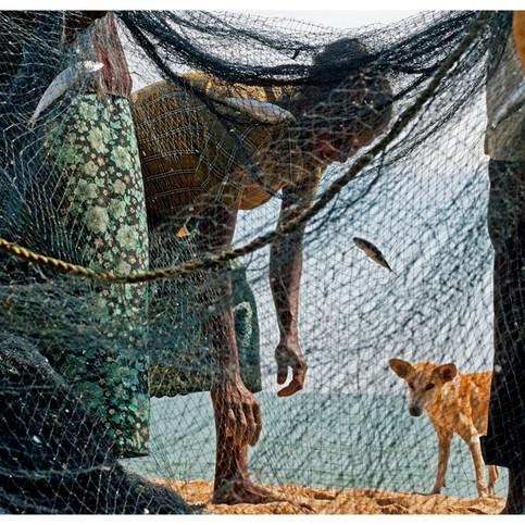 Fisherfolks.  Nilaveli. # 3