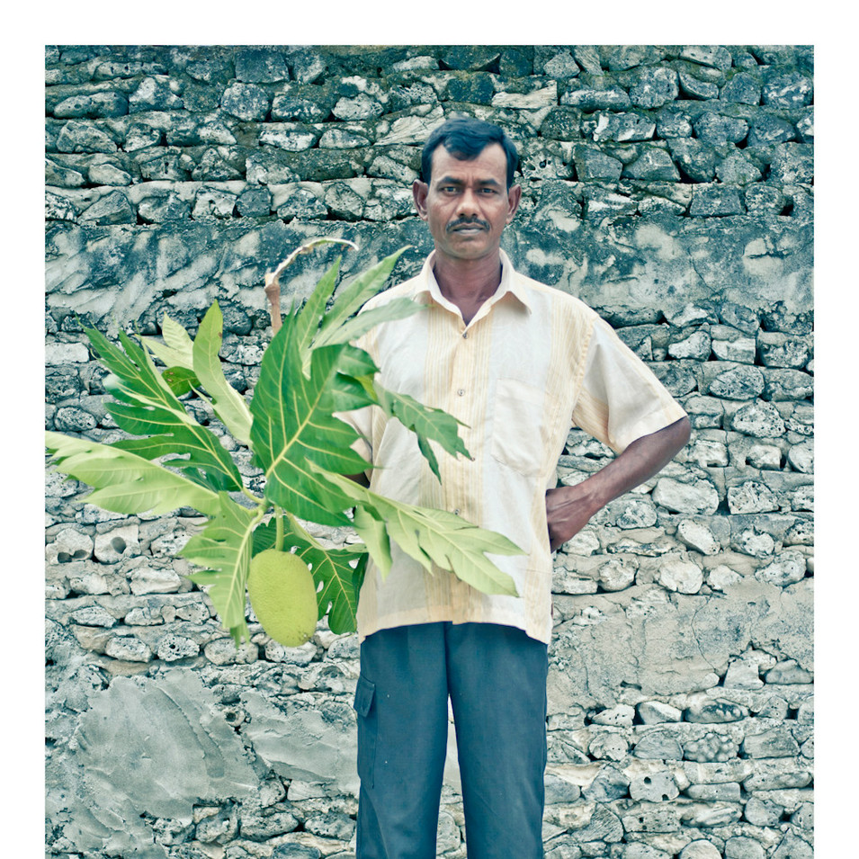 Plant Life # 3