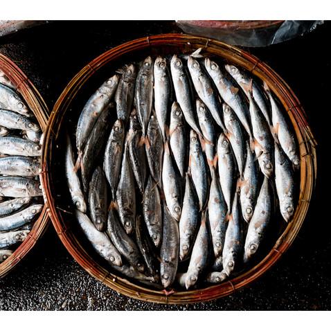 Quy Nhon Fish Harbor # 3