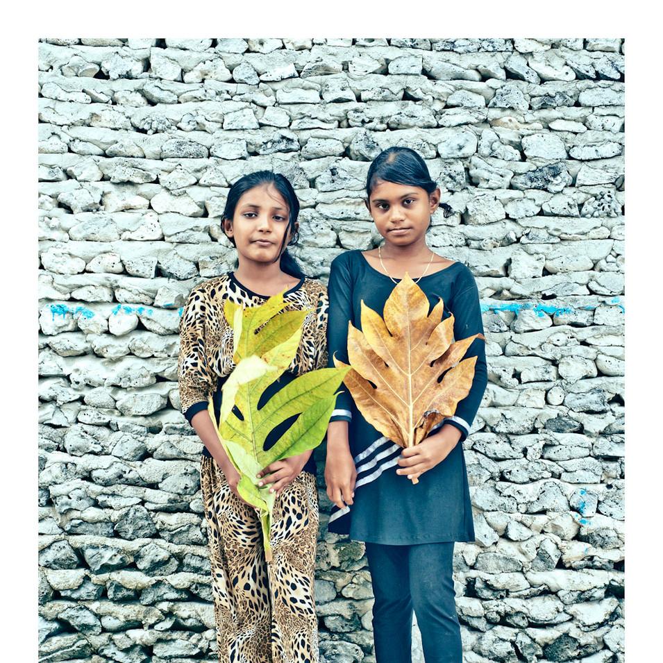 Plant Life # 16