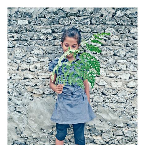 Plant Life # 4