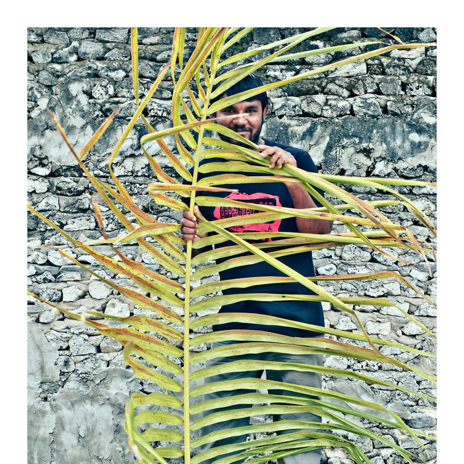 Plant Life # 13