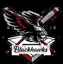 Blackhawks Logo .png