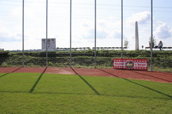 Backstop links