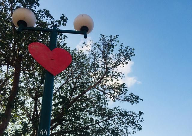 לב בכיכר המדינה